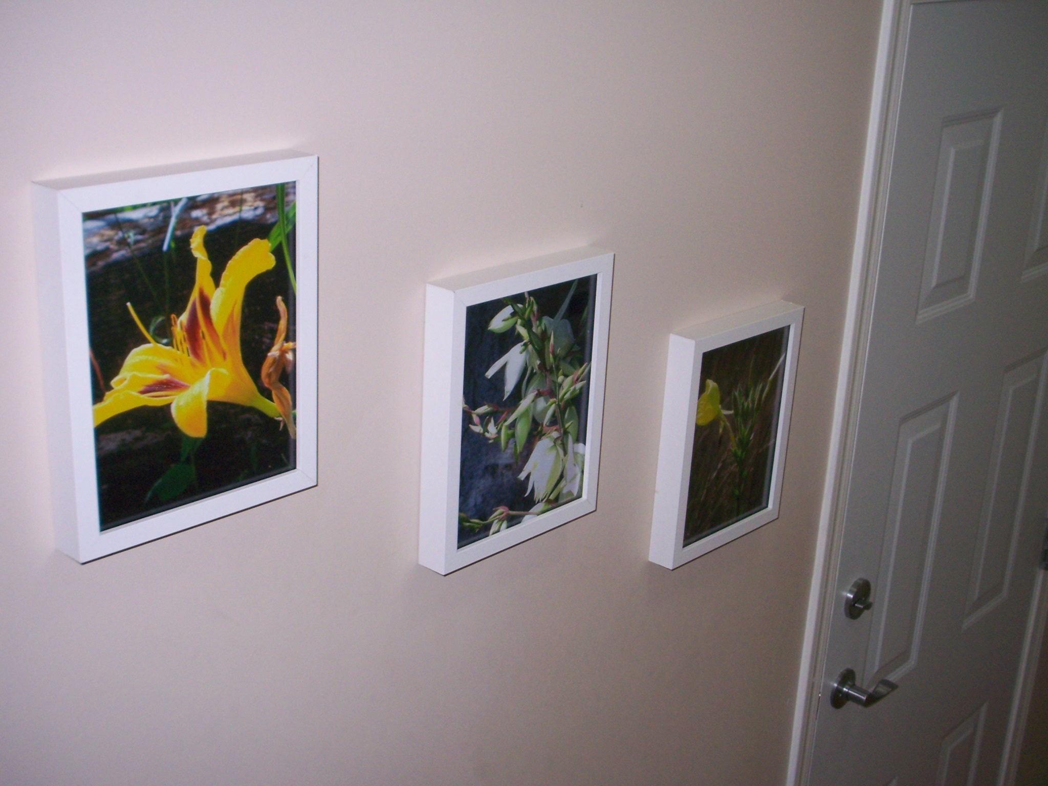 "This ""artwork"" of mine only cost me the $6 for the enlargements as I already had the frames hanging around empty."