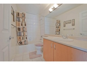 No true before picture again. This is another bathroom in my complex with the same finishes as mine.