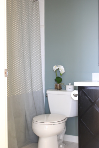 Hard to show off the shower curtain without sticking you with a big picture of my toilet. I avoided having to do pattern matching on the shower curtain by doing the bottom third in a different fabric. I added some pleating to the bottom for an extra touch of fancy.