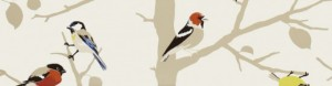 Bird Fabric Header